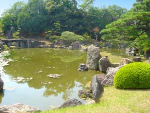 公園と池の写真
