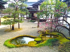 日本庭園と池の写真