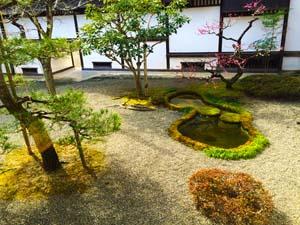 池のある日本庭園の写真