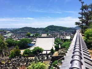 西国寺絡みた尾道の写真