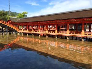 宮島の厳島神社の写真