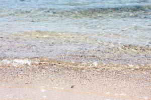 透き通った海の波打ち際の写真