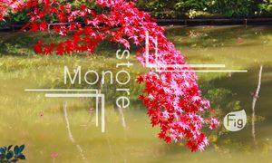 垂れ下がる紅葉の葉と池の写真