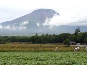 夏の富士山と雲