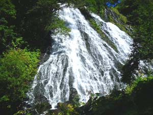 勢いよく流れ落ちる滝の写真