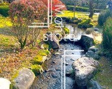 赤く色づき始めた庭園の川の写真