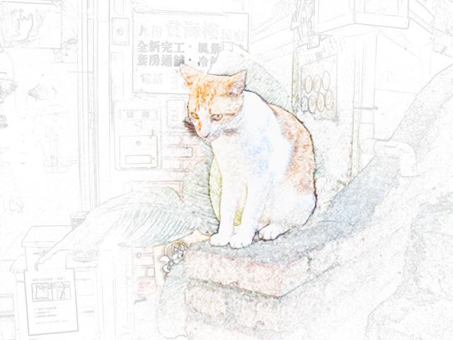 colorsheet 台湾の猫のぬり絵20004完成イメージ