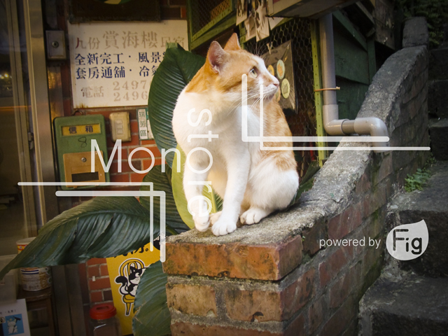Pictures of cats living in Jioufen Taiwan