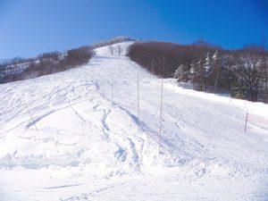 斑尾高原スキー場 シュプールと青空の写真[Photo10214]