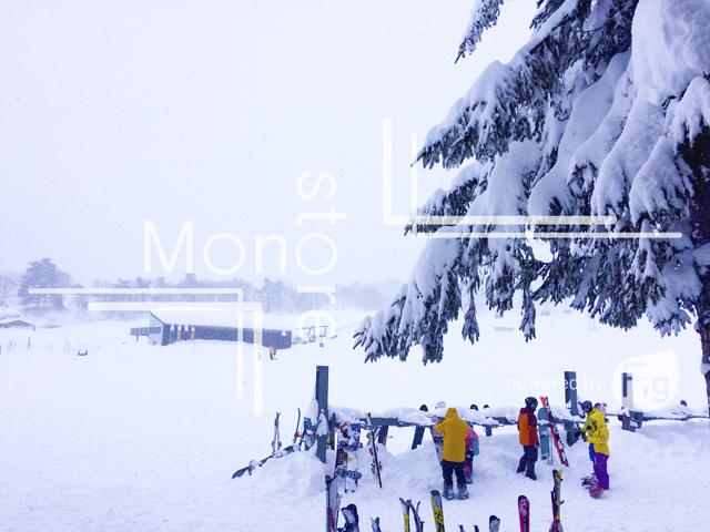斑尾高原スキー場に降り続ける雪の写真