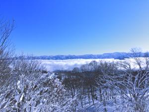 青空と雲海の写真