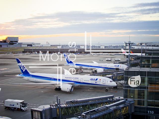 ANA飛行機と羽田空港駐機場の写真