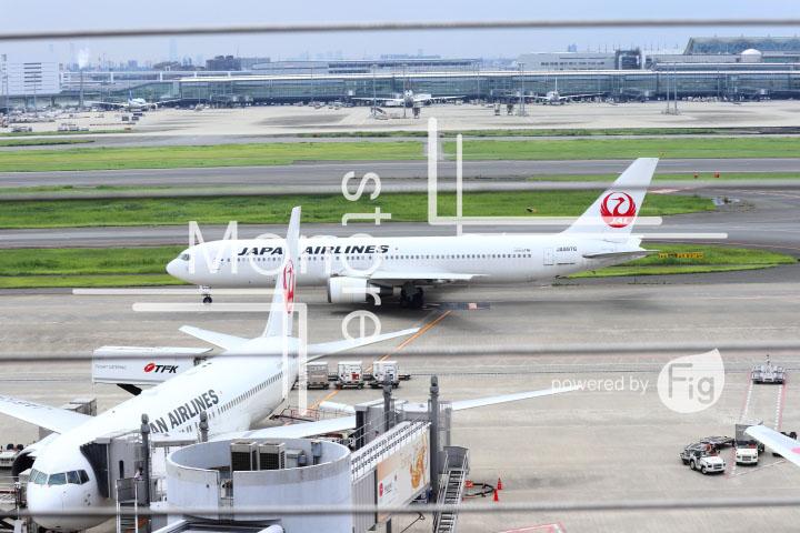 飛行機の写真 Airplane Photography 0416