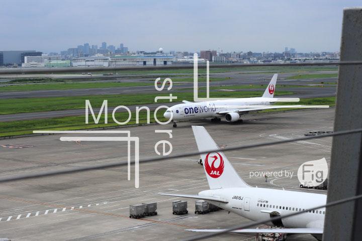 飛行機の写真 Airplane Photography 0417