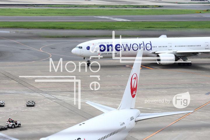 飛行機の写真 Airplane Photography 0420