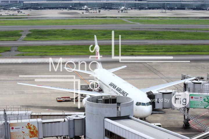 飛行機の写真 Airplane Photography 0424