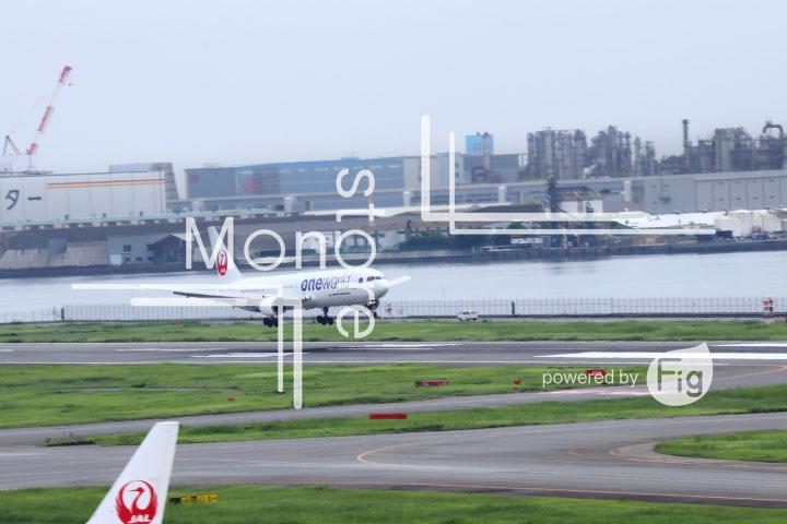 飛行機の写真 Airplane Photography 0425