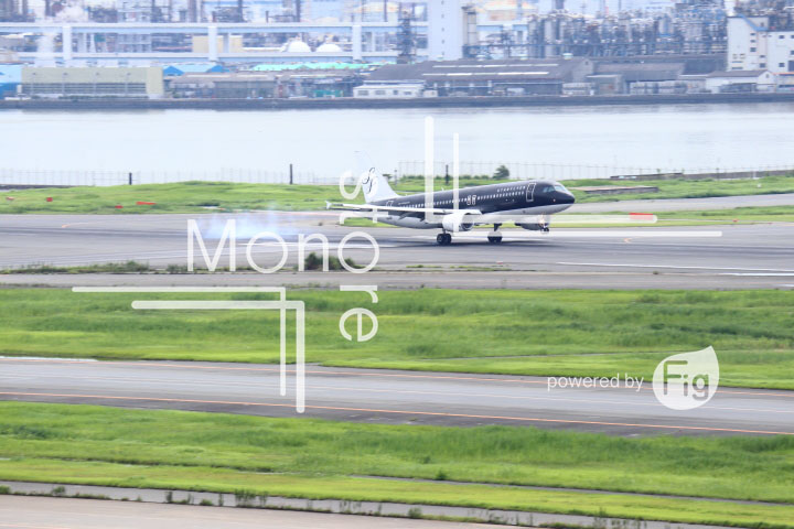 飛行機の写真 Airplane Photography 0435