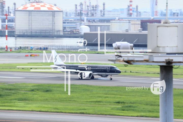 飛行機の写真 Airplane Photography 0437