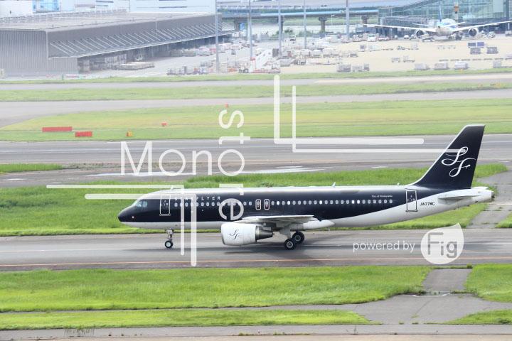 飛行機の写真 Airplane Photography 0446