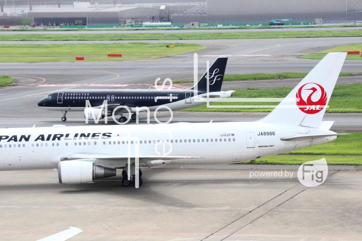 飛行機の写真 Airplane Photography 0447