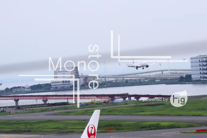 飛行機の写真 Airplane Photography 0492