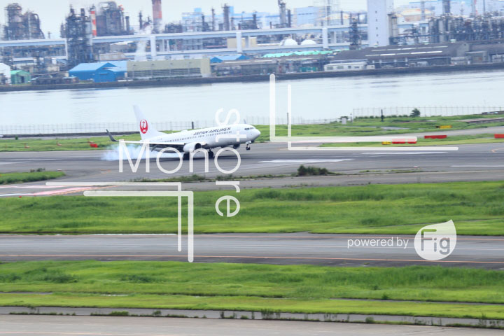 飛行機の写真 Airplane Photography 0497