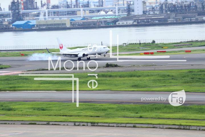 飛行機の写真 Airplane Photography 0498