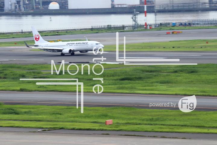 飛行機の写真 Airplane Photography 0499