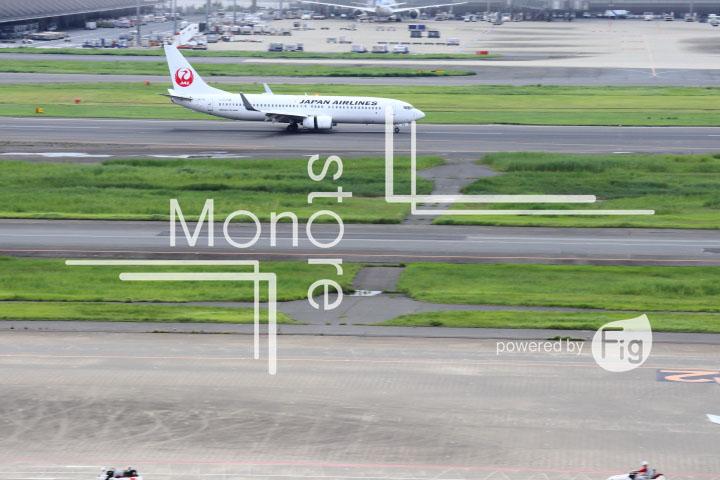 飛行機の写真 Airplane Photography 0502