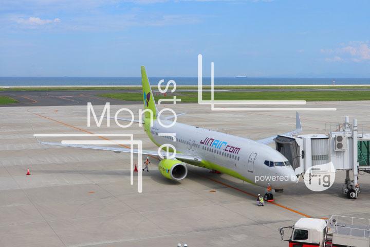 飛行機の写真 Airplane Photography 0917