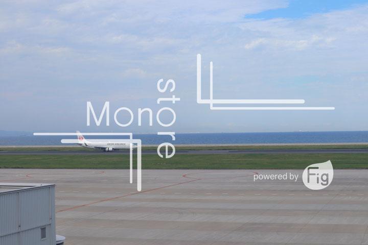飛行機の写真 Airplane Photography 0920