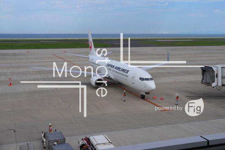 飛行機の写真 Airplane Photography 0942