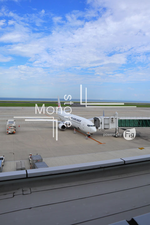 飛行機の写真 Airplane Photography 0950
