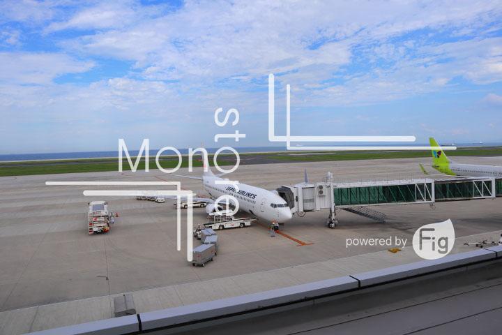 飛行機の写真 Airplane Photography 0954