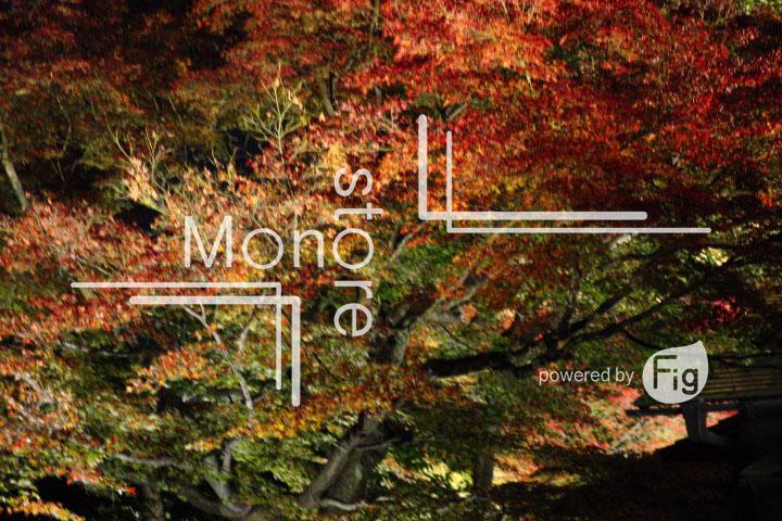 紅葉の写真 Autumn leaves Photography 3472